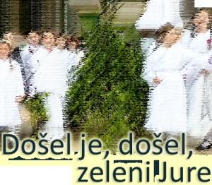 zelenijure_filter